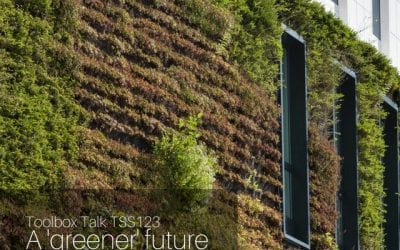 A 'Greener' future – vertical and roof gardens