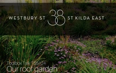 Our Roof Garden – The Story of 38 Westbury St, St Kilda East